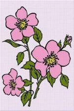 Trandafir sălbatic