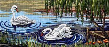 Lebede pe lac