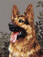 Câine lup