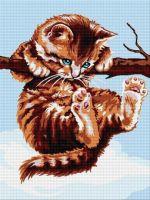 Pisicuță