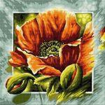 Floare de mac