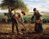 Plantatorii de cartofi