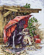 În ploaie