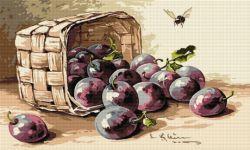 Coş cu prune