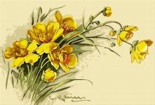Flori galbene