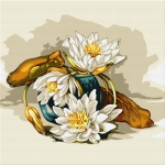 Flori de nufăr