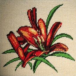 Floare de crin
