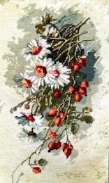 Flori de margarete
