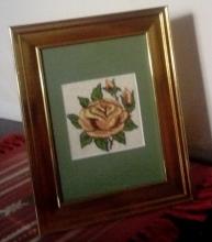flori-trandafir